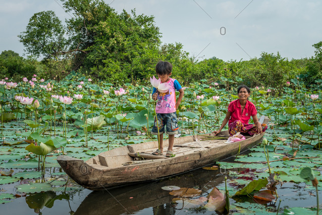 Kompong Cham, Cambodia - 12 March 2013: Cambodian Mother And Son Collect Lotus Flowers From Local Lotus Pond.