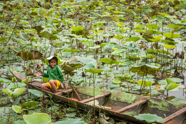 Lotus Pond, Battambang Province, Cambodia - 14 August 2014: Young Child Plays In Old Wooden Fishing Boat In Lotus Pond And Makes Rain Hat From Lotus Leaves.