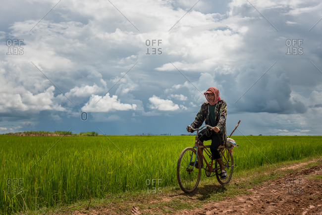 Country Road, Cambodia - 25 October 2014: Farmer Returns From Rice Paddy On Bicycle.