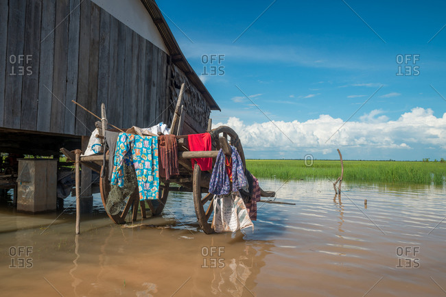 Flooded Houses, Kompong Thom, Cambodia - 17 October 2013: Laundry Drys On Cow Cart As House Is Flooded.
