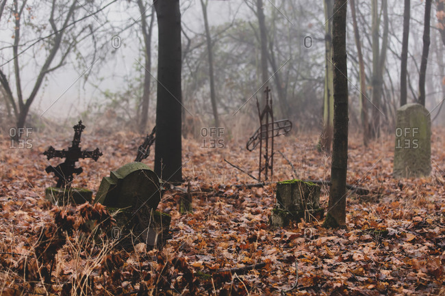 Old abandoned cemetery during fog in autumn