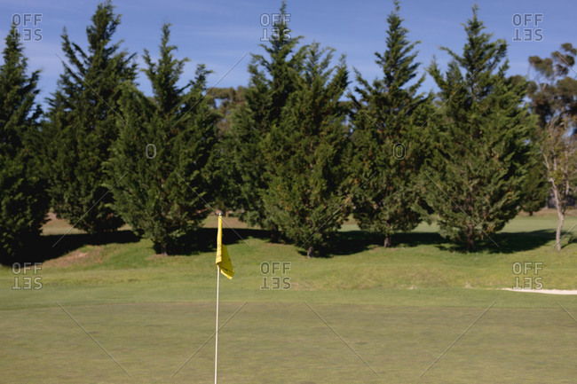 Yellow flag on the green at a golf course. sport leisure hobbies golf healthy outdoor lifestyle.