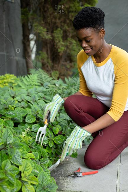 African American woman wearing gardening gloves gardening in the garden. self isolation in quarantine lockdown
