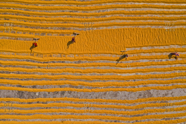 Aerial view of millions of grains of rice are laid out to dry at a mill as workers brush them with leaves in the hot sun, Dhamrai, Dhaka, Bangladesh.