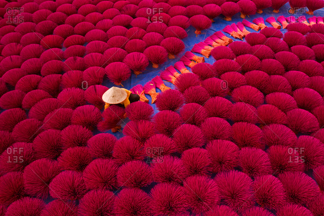 Aerial view of incense workers sits surrounded by thousands of incense sticks, where the sticks have been traditionally made for hundreds of years in Quang Phu Cau, Hanoi, Vietnam.