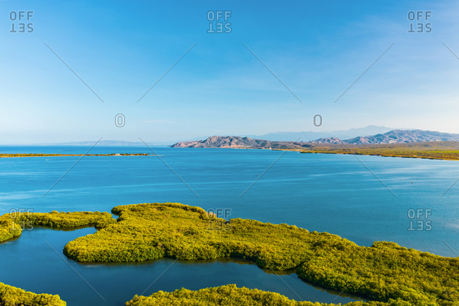 Aerial view of green mangroves in bahia de las calderas with mountains behind on a clear sunny day, Peravia, Dominican Republic