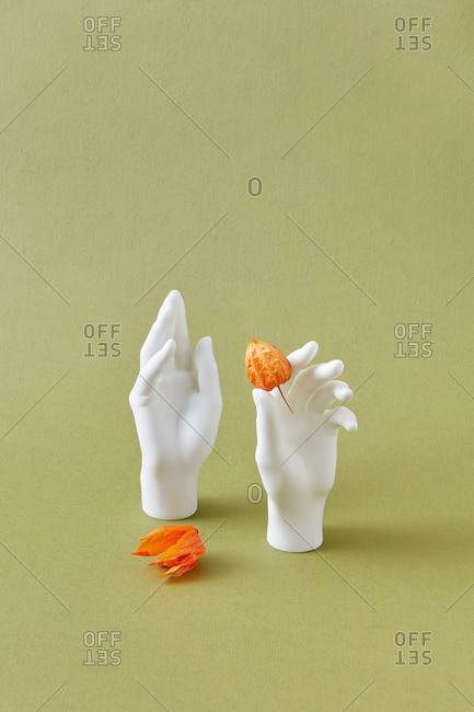 Gypsum hands with yellow physalis flowers composition against light green background with copy space, autumnal concept