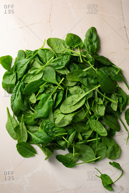 Spinach leaves for salad on light surface