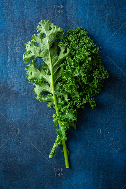 Two green branch of kale plants