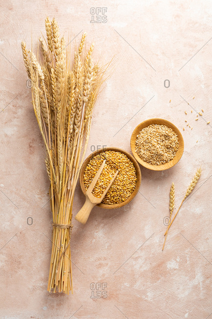 Overhead view of wheat and rye grains