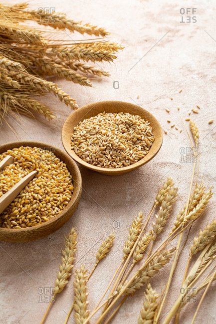 Close up of wheat and rye grains