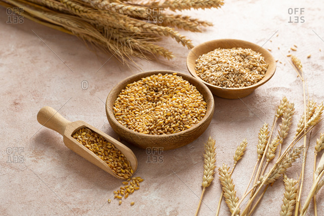 Close up of wheat and rye grains  on light surface