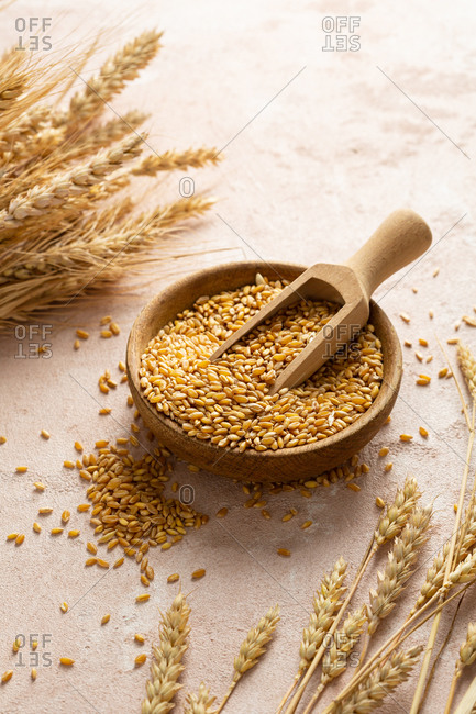 Organic wheat grain in wooden bowl,  healthy whole food