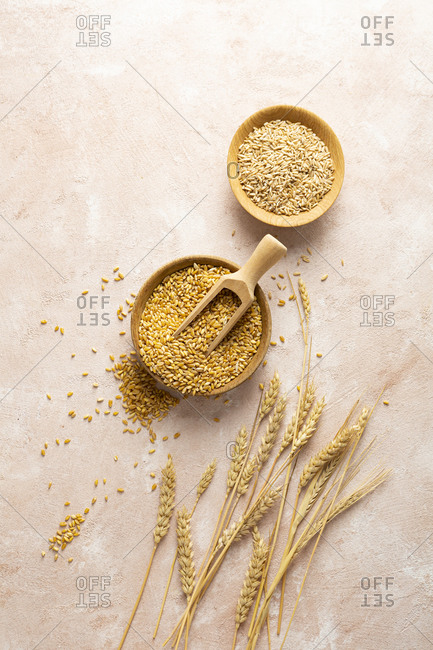 Overhead view of wheat and rye