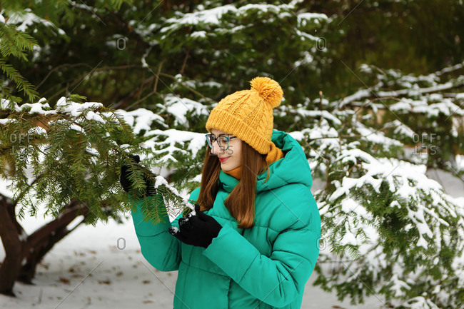 The young female woman in a green winter jacket is touching the snowy trees in the park or forest that is full of snow
