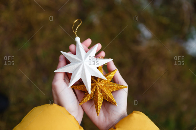 The young female woman in a yellow winter jacket is standing between the pine trees in the  green forest and is holding  the Christmas stars (balls/ baubles)