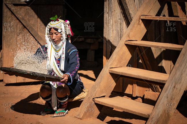 AKHA HILL TRIBE, HOKYIN VILLAGE, MYANMAR - 19 November 2019: Woman in traditional costume thrashing rice.