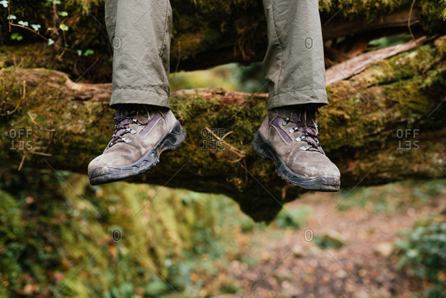 Legs of crop explorer in trekking boots sitting on mossy ground in forest during summer adventure