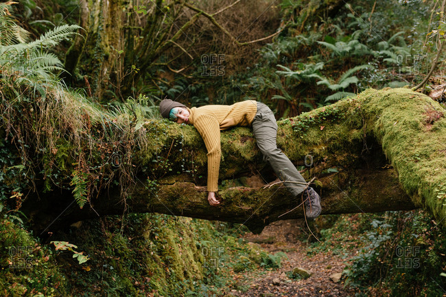 Side view of female explorer lying on tree trunk and having break during trekking in mossy forest