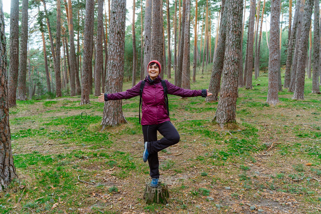 Full body of cheerful young female hiker in warm outfit standing on one leg on stump among coniferous trees while enjoying autumn adventure in Sierra de Madrid in Spain