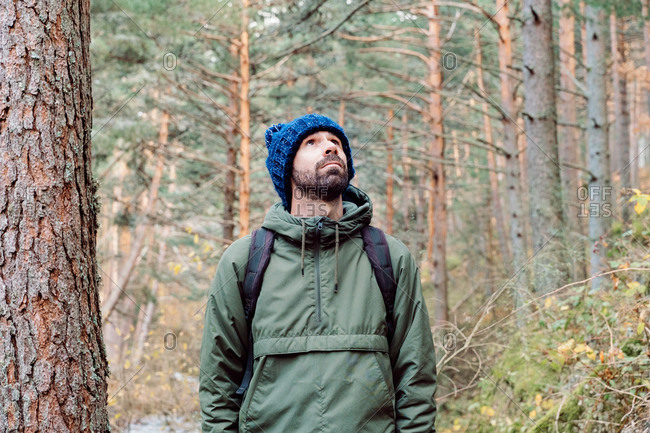 Male traveler with backpack standing in coniferous woods with tall pine trees during vacation in Sierra de Madrid