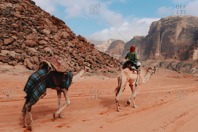 Back view of traveler sitting on camel and riding along sandstone valley with rocks in Wadi Rum