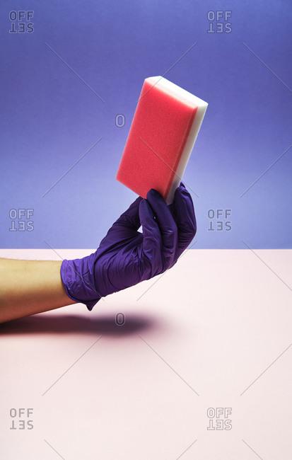 Unrecognizable crop person in glove demonstrating soft dishwashing sponge on purple background in studio