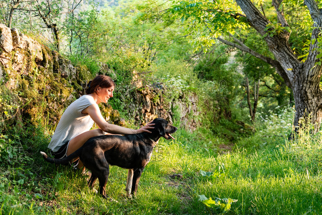 Side view of content female owner stroking adorable loyal dog while relaxing together on sunny day in green woods