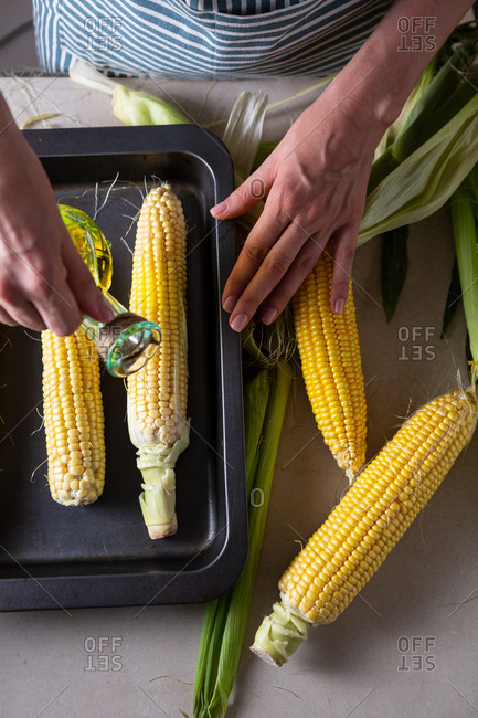 Ripe corn cob on baking tray with woman pouring oil over top