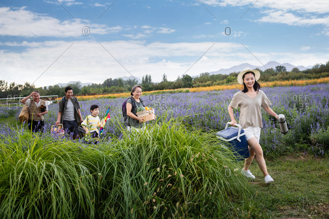 Happy family carrying items for a picnic in a lavender field