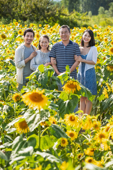 Portrait of a young adult couple standing in a field of sunflowers with senior parents