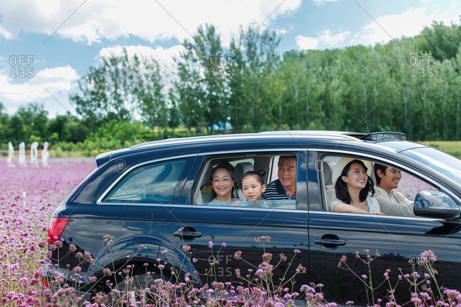 Multi-generational family riding in car looking out the window at a field of flowers