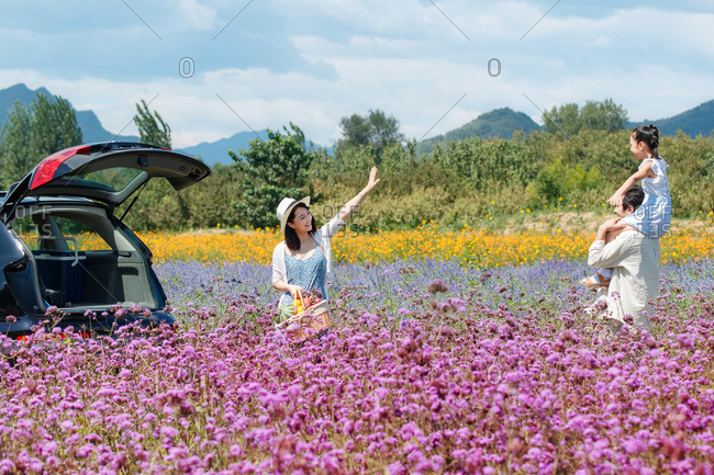 Little girl on father's shoulders in a field of purple flowers while mother waves from car as she gets a picnic basket