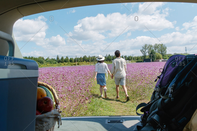 Rear view of a young couple walking in a field of purple flowers viewed from inside of a car