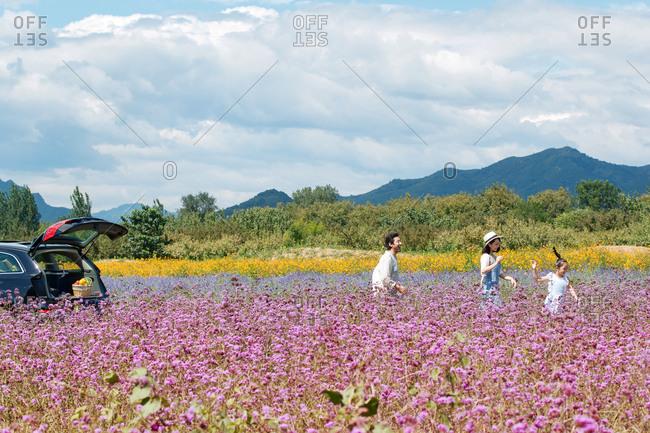 Happy little family of three walking in a field of flowers