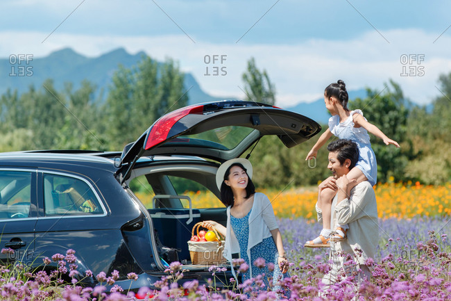 Little girl on father's shoulders in a field of purple flowers while mother grabs a picnic basket from the car