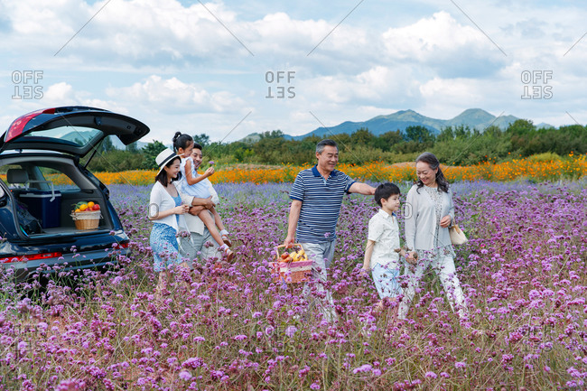 Multi-generational family unloading car for a picnic outing in field with purple flowers