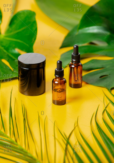 Bottles and dark jar with palm leaves around on yellow background