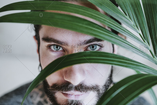 Close-up of man staring while standing behind leaf at home