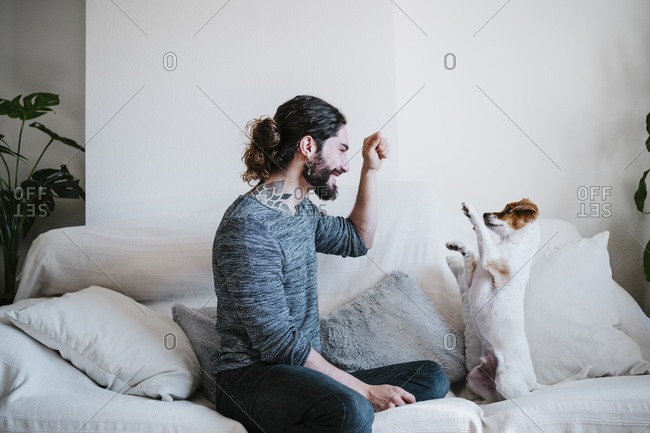 Young man playing with cute dog while sitting on sofa at home