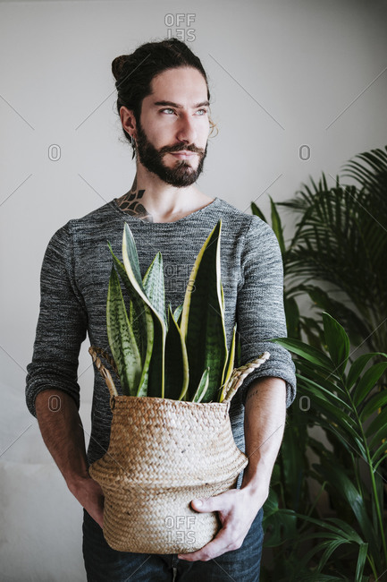 Young man holding Sansevieria plant while standing at home