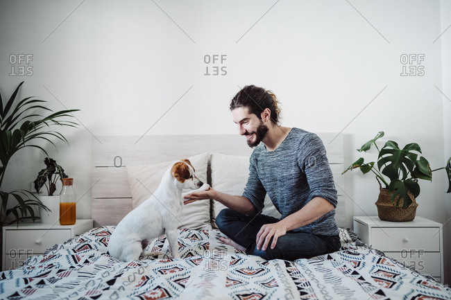 Smiling man playing with dog while sitting on bed at home
