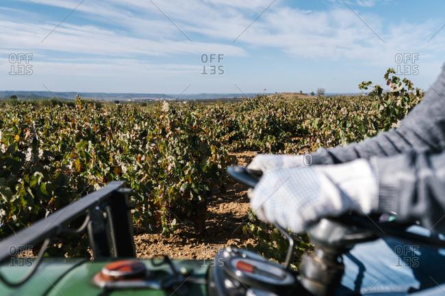Man's hands on steering wheel of tractor against sky in vineyard