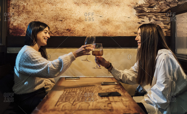 Female friends toasting glasses over table in restaurant