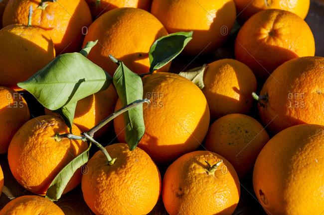 Fresh ripe oranges close up shot