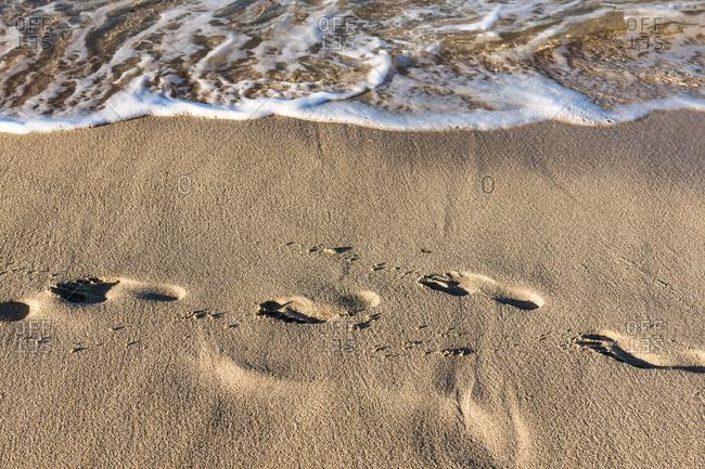 Fresh footprints in beach sand