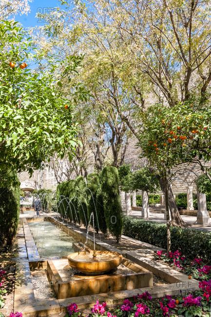 March 10, 2013: Spain- Mallorca- Palma de Mallorca- Pond and fountain in Jardines Short Del Rei park