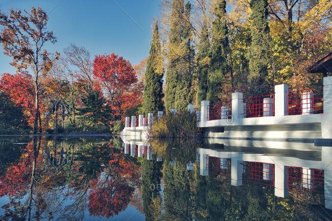 Russia- Krasnodar Krai- Sochi- Trees reflecting on surface of shiny pond in autumn park