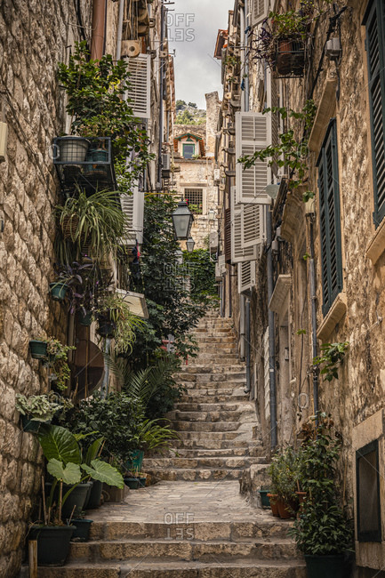Croatia- Dubrovnik- Steps and plants on narrow alley in old town