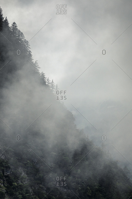 Clouds covering forested mountain setting